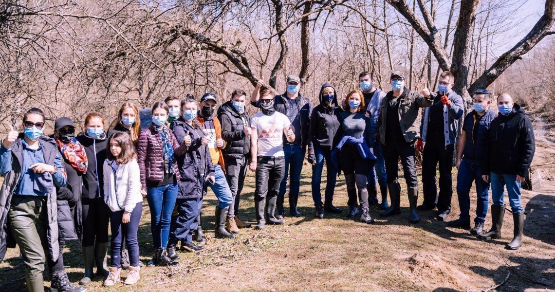 Voluntarii PNL Sibiu, acțiune de împădurire la Tălmaciu